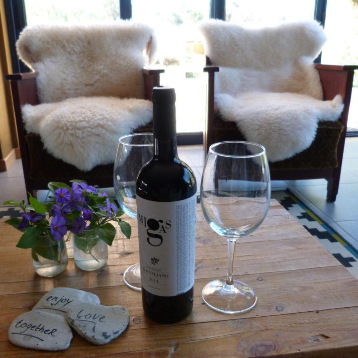 Ook genieten op koudere dagen, met een goed glas wijn bij de houtkachel