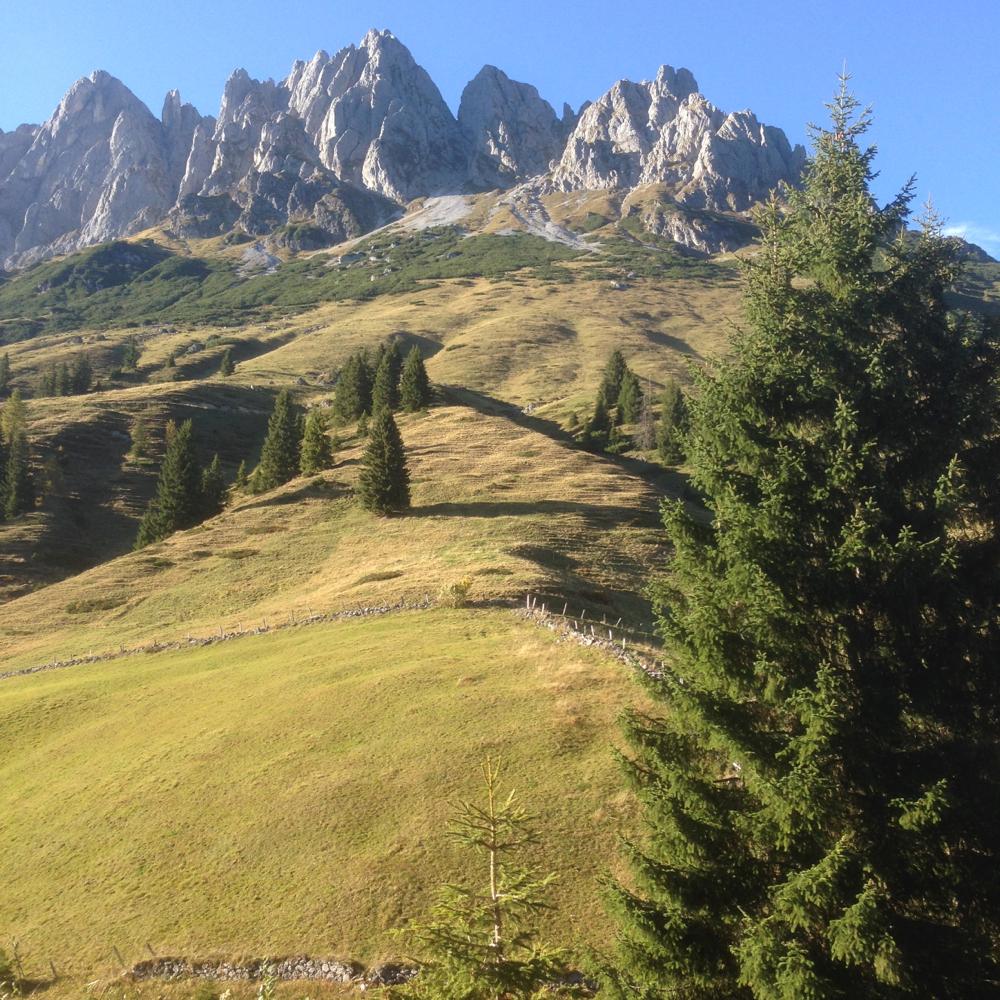 Vanuit de appartementen kijk je uit over de bergtoppen van de Mandlwand.