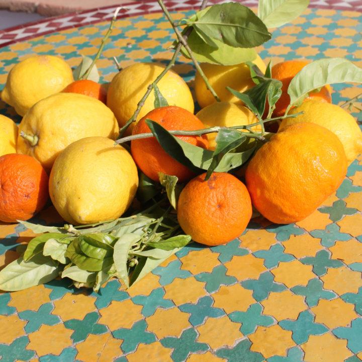 In de ruime tuin staan sinaasappel- en citroenbomen.
