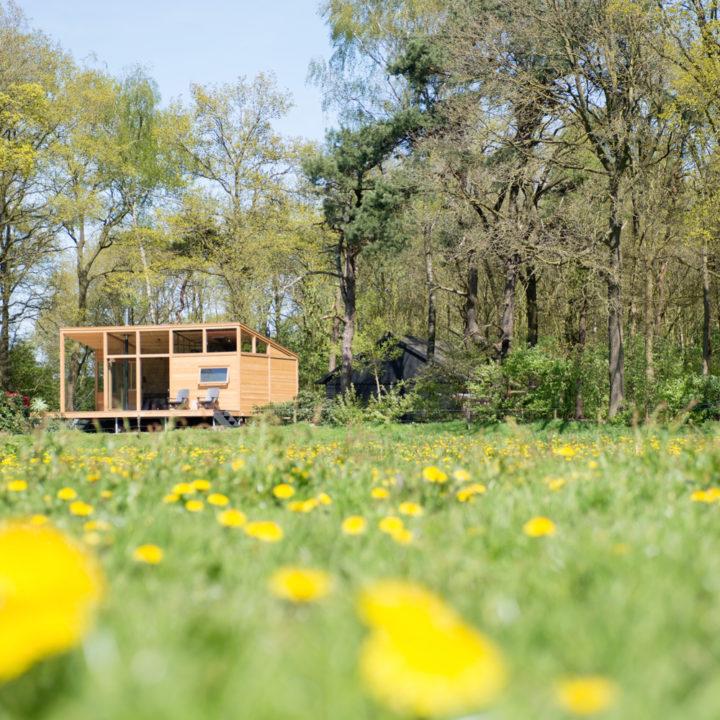 Getaway Deluxe 01 ligt midden in de landerijen, met een eigen stuk bos erbij. Logeren op het platteland bij een bijzondere accommodatie.