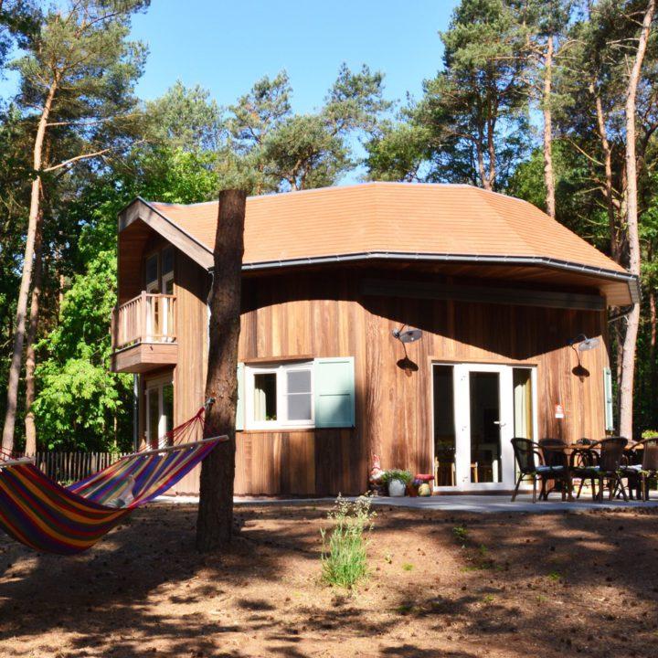 Bijzonder vakantiehuis in de bossen bij Kasterlee