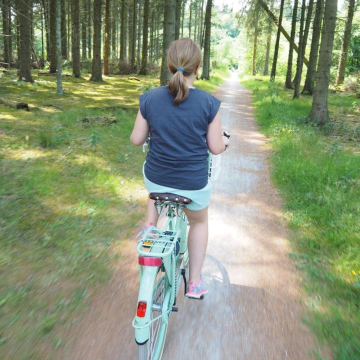 Op de fiets door nationaal park Friese Woud.