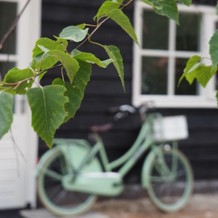 Groene bladeren met daarachter een mintgroene fiets tegen het zwarte Boshuis Friesche Duin.