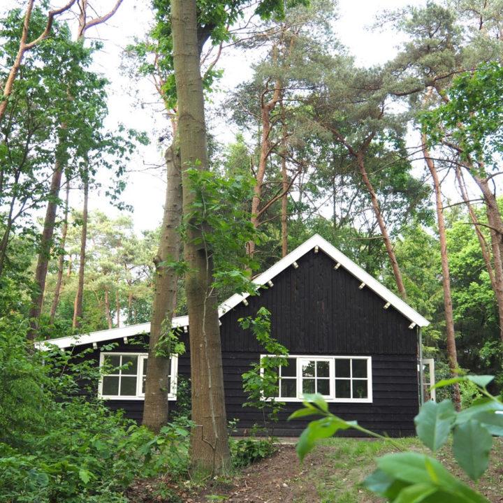 Scandinavisch uitziend zwart houten boshuis in de bossen bij Appelscha.