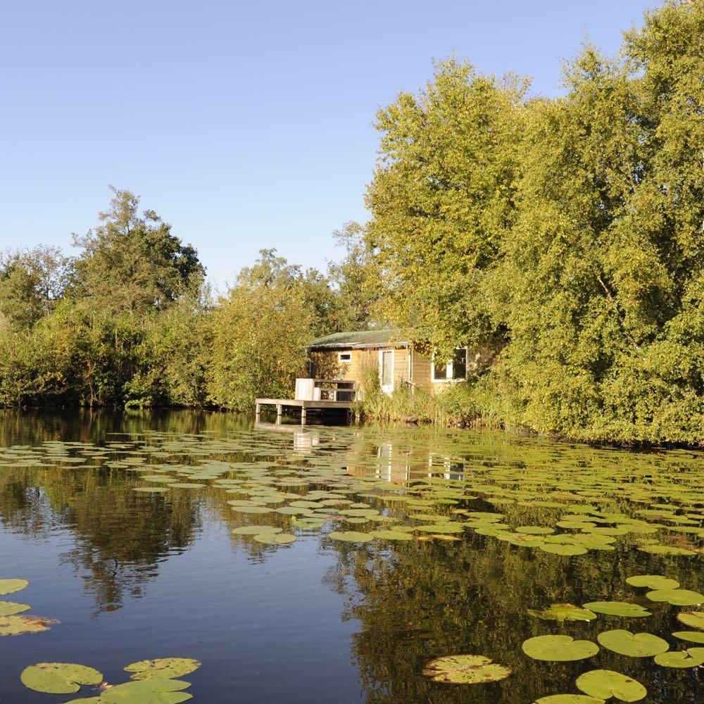 Vakantiepark in Friesland   Aan het water   Tusken de Marren