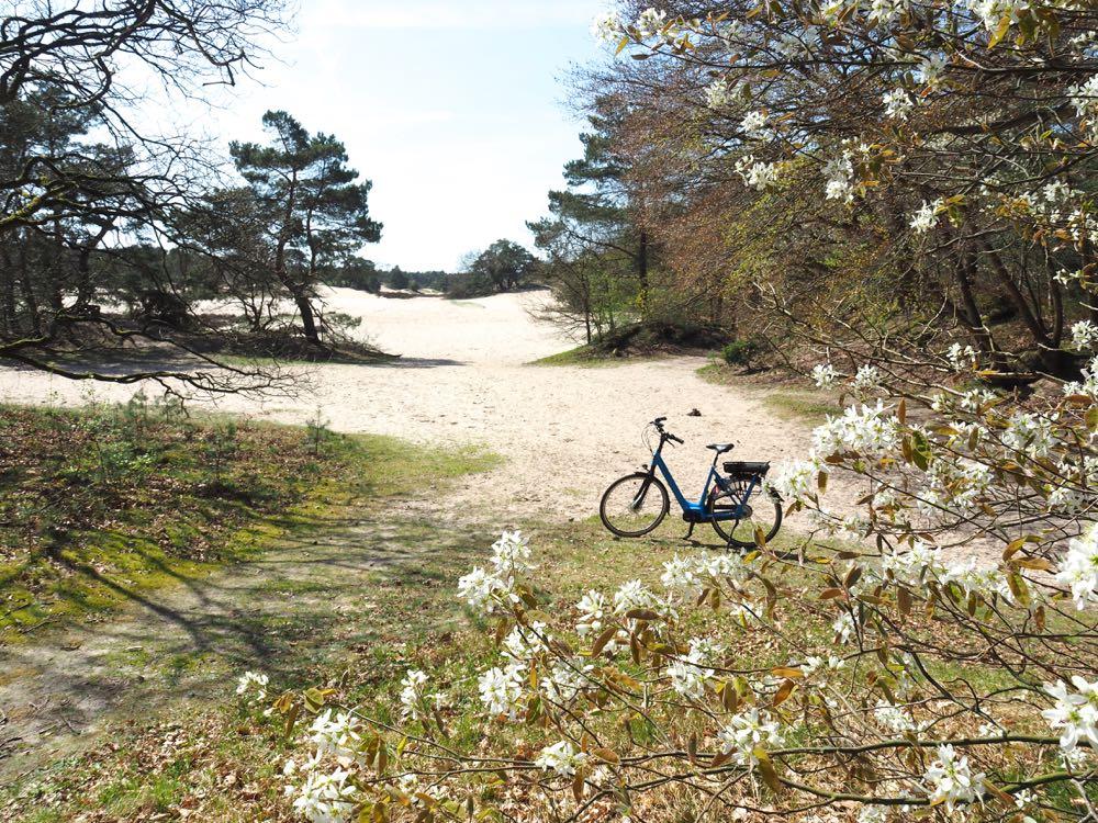 Zandverstuiving met fiets bij Soest