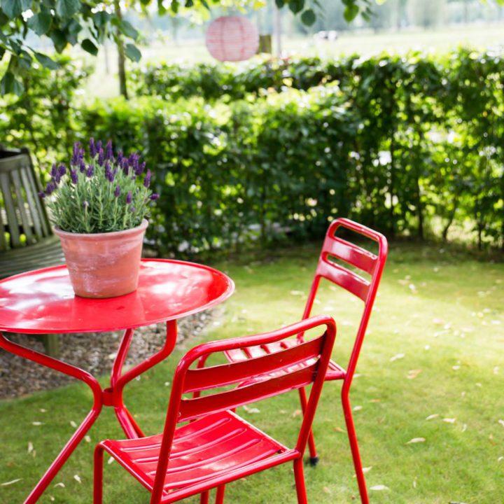 Rood zitje in de tuin