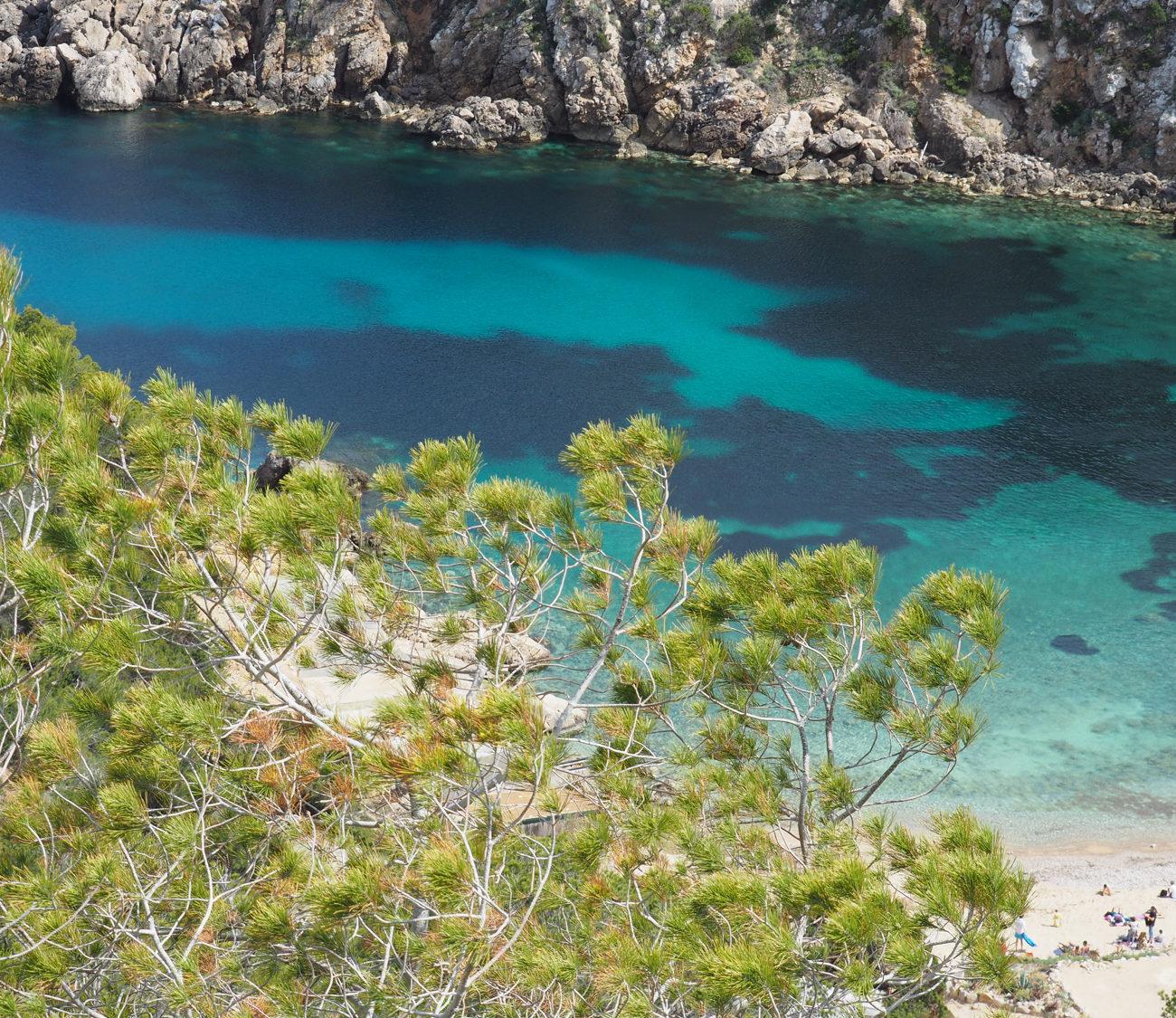 Licht blauw meertje in Ibiza met takken op de voorgrond