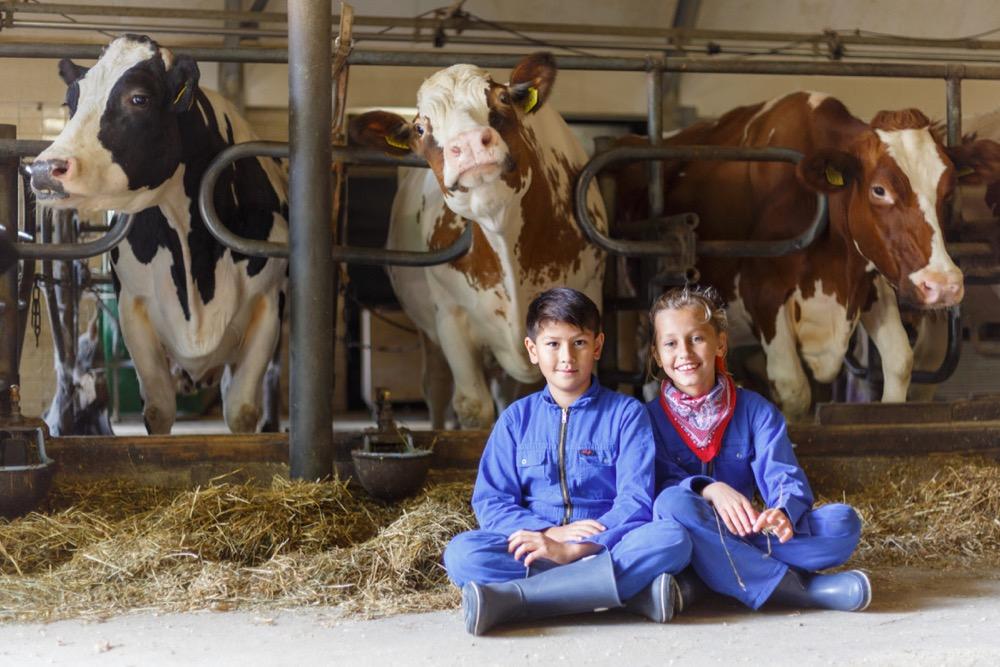 Twee kinderen met overal aan, zittend op de grond tussen de koeien