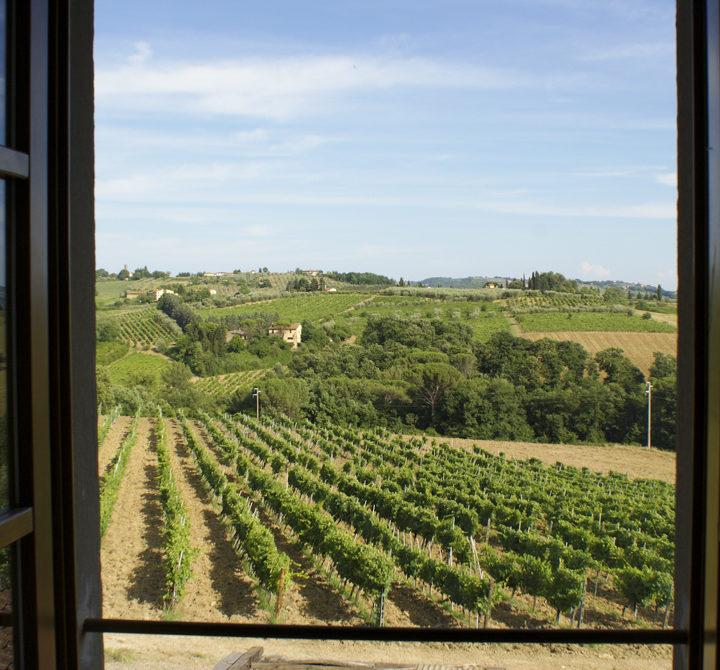 Uitzicht over de wijngaarden in Toscane