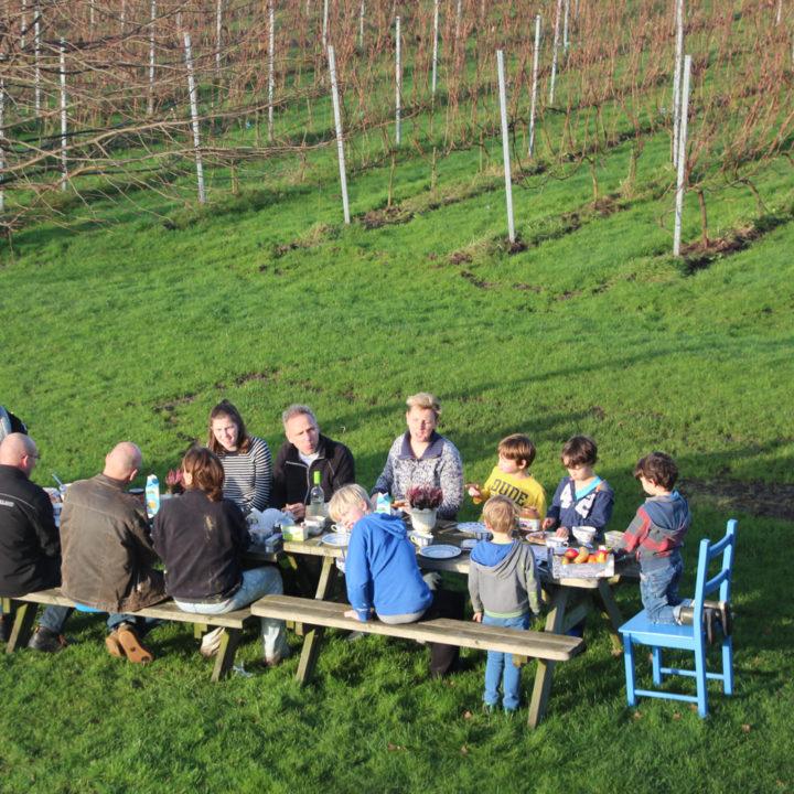 Komt tot rust en geniet van de verwennerij in de wijngaard