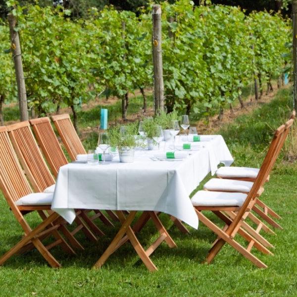 Gedekte tafel in de wijngaard tussen de druivenranken