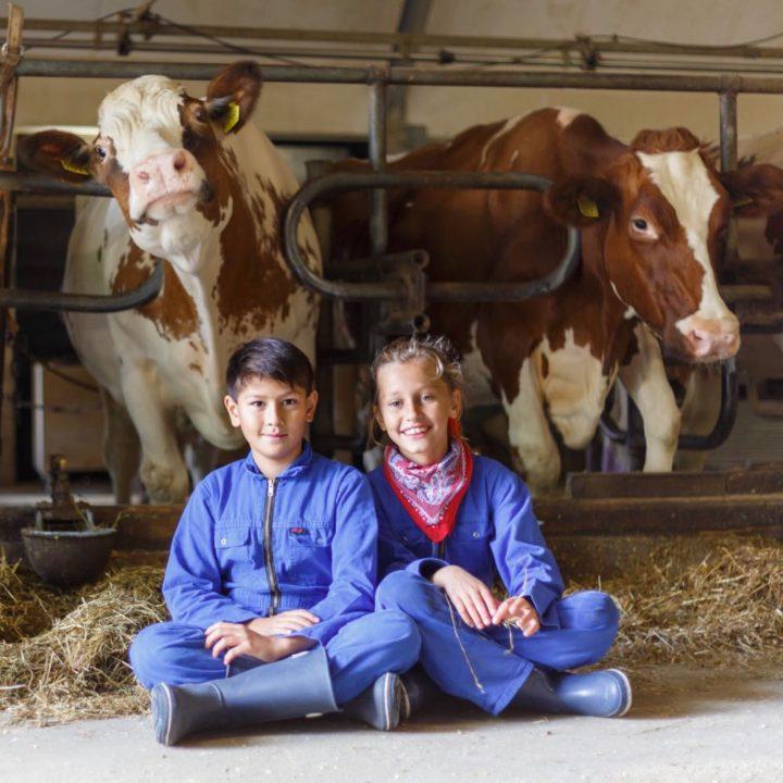 Kindervakantie op de boerderij
