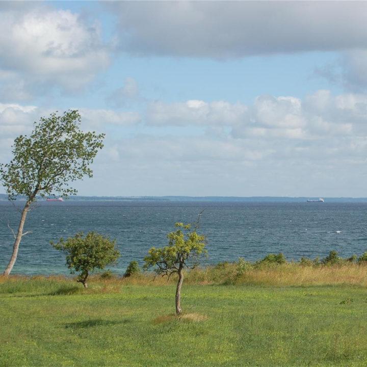 Uitzicht vanuit het vakantiehuis op Funen