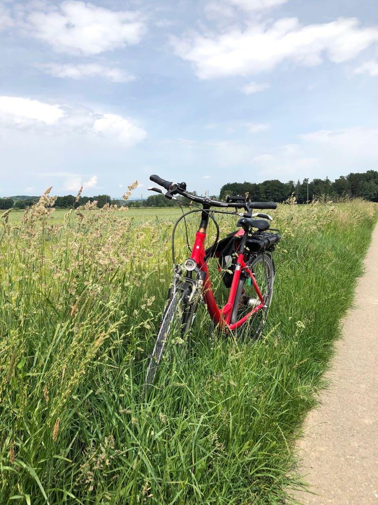 Rode fiets staat in grasveld