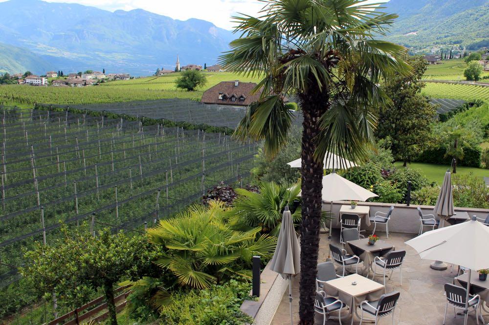 Wijngaard met een terras