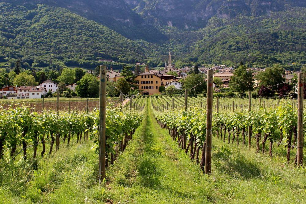 Wijnranken met tegen berghelling een Italiaans dorp