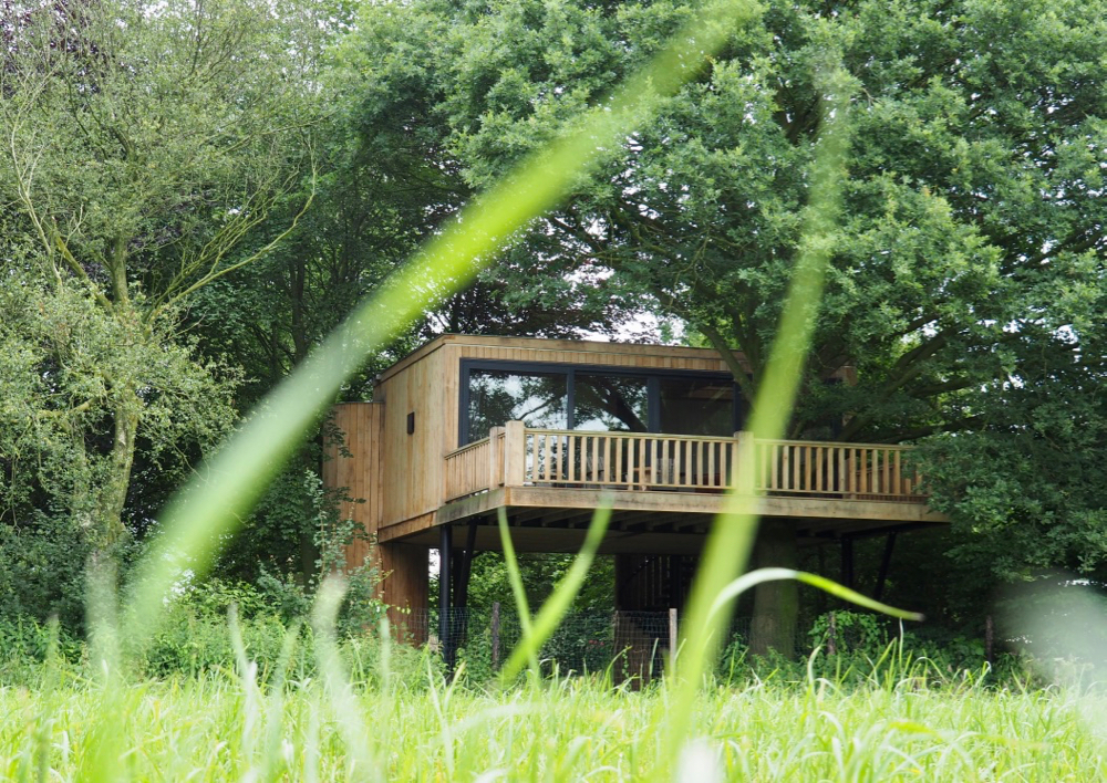 Luxe boomhut in een weiland, een bijzonder plekje voor een leuk weekendje weg in Nederland