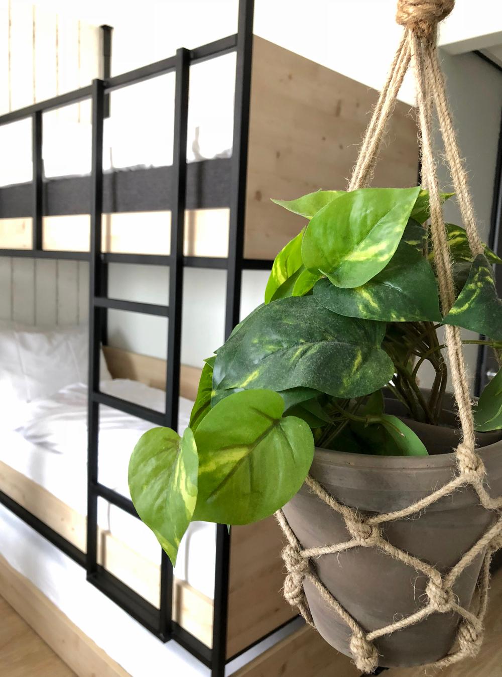 Plant met op de achtergrond een stoer stapelbed