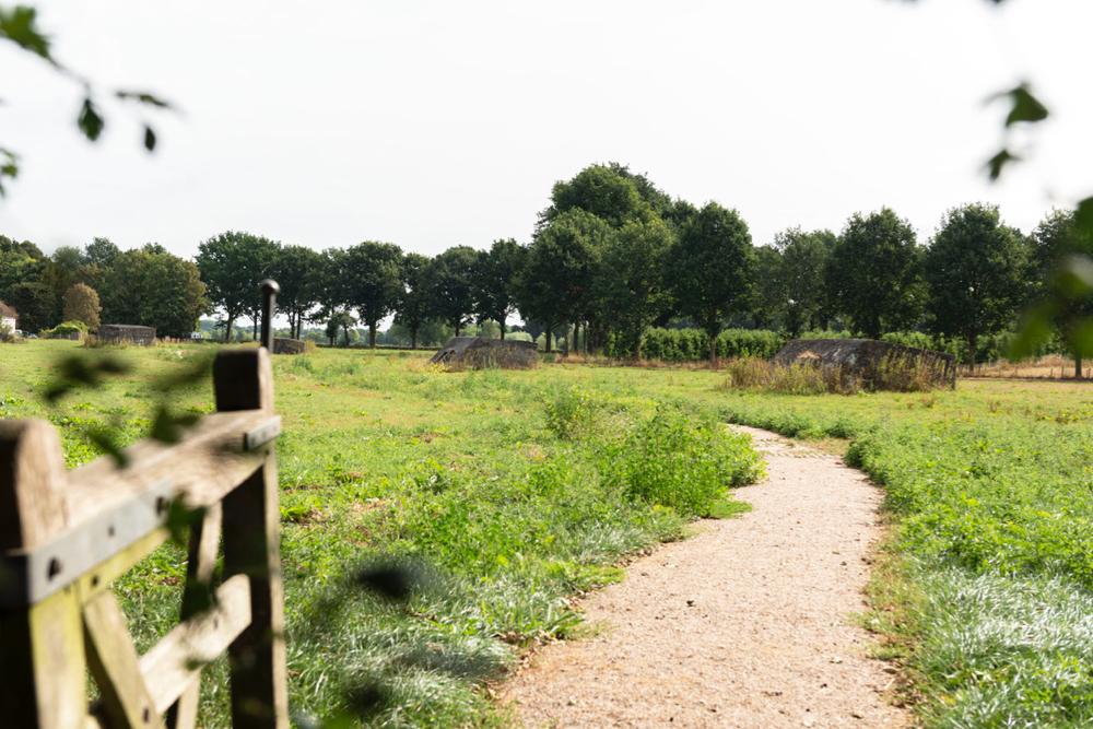 Openstaand hek met een wandelpad tussen bunkers door