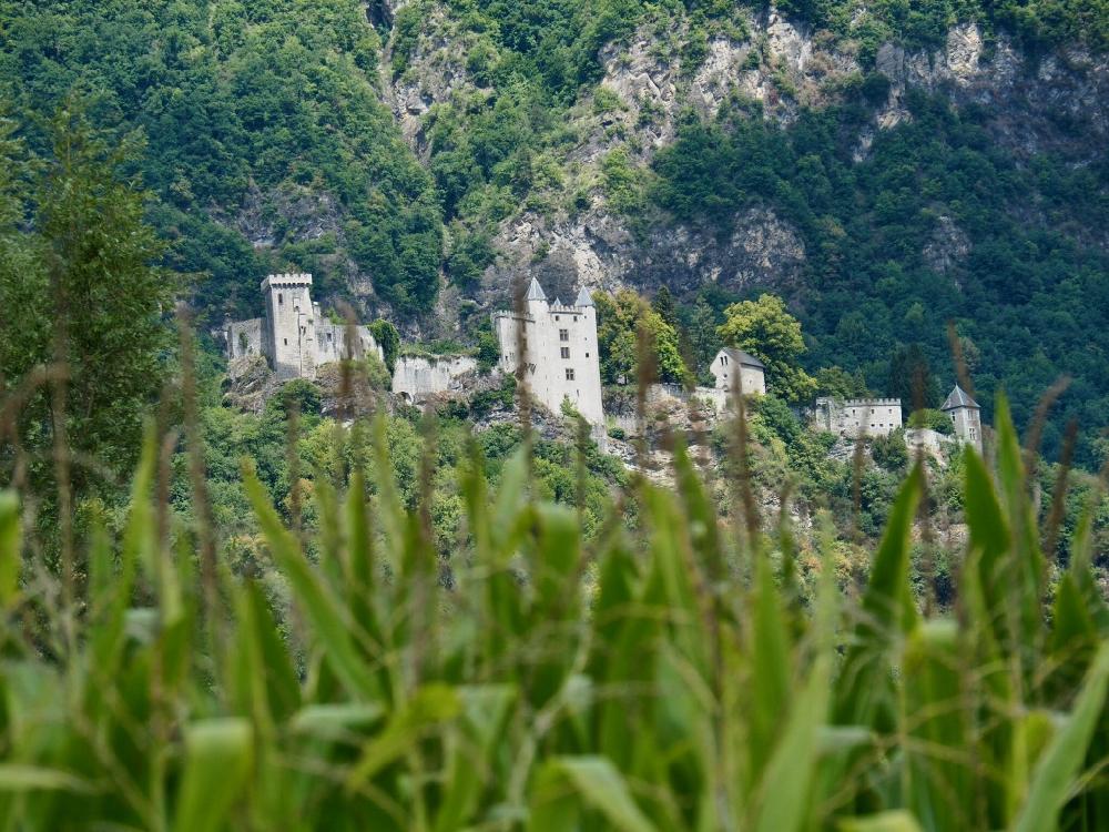 Door de maisbladeren heen zicht op het chateau van Miolans