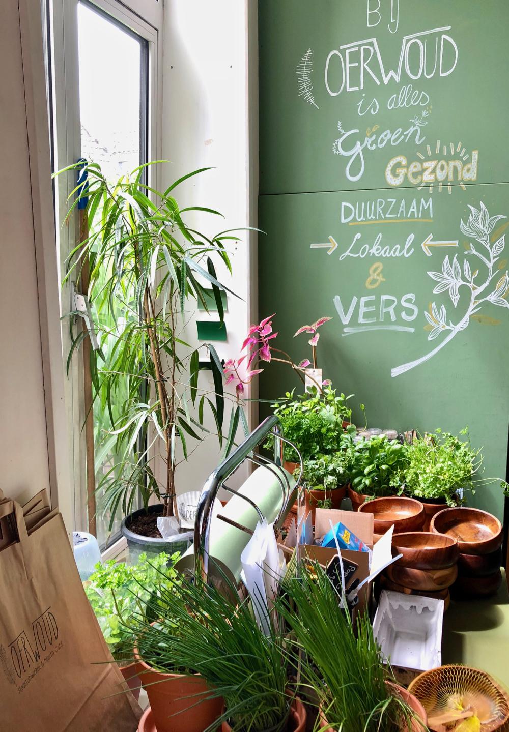 Planten, potjes en een groen krijtbord voor het raam met de tekst: Bij Oerwoud is alles vers