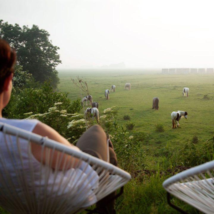 Voor het huis staan twee stoelen met uitzicht over de weilanden