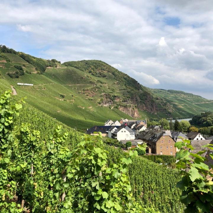Dorpje tussen wijnranken langs de Moezel