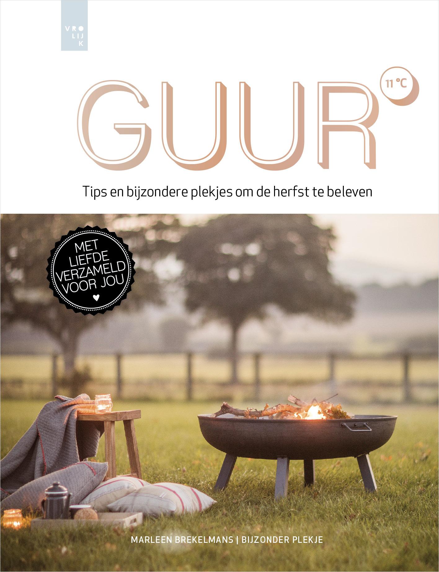 Cover van het boek Guur
