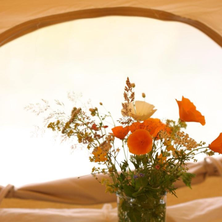 Verse bloemetjes in je Bell tent.