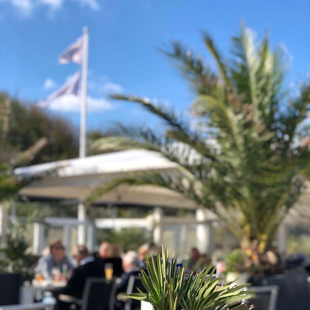 Palmbomen op het terras van strandpaviljoen aan de Noordzee