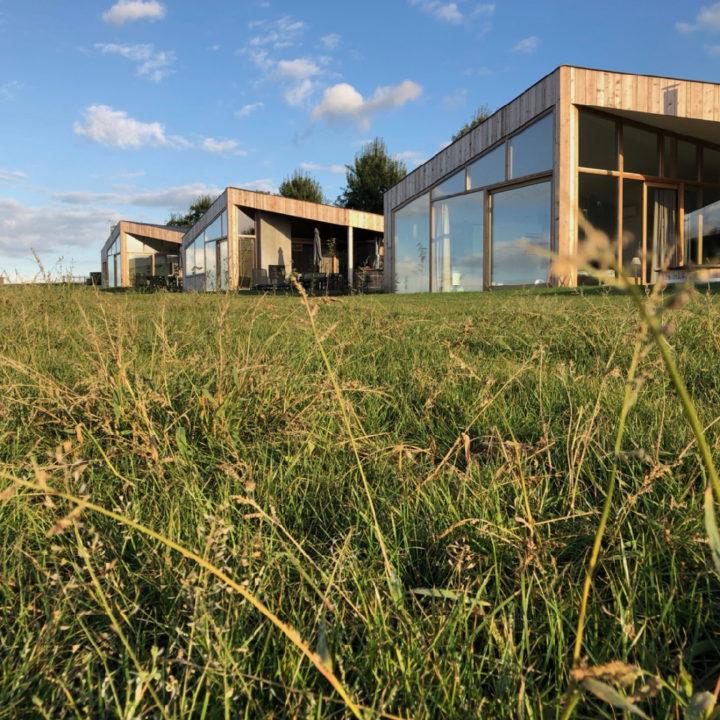 Dauw op het gras en Natuurlofts® in de zon