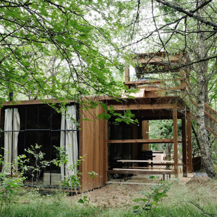 Cabin in de bossen