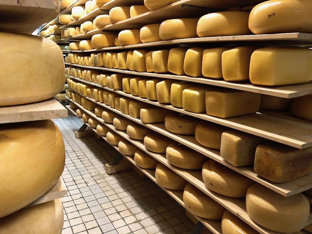 Een voorraad kaas op de planken bij Kaasboerderij Heileuver