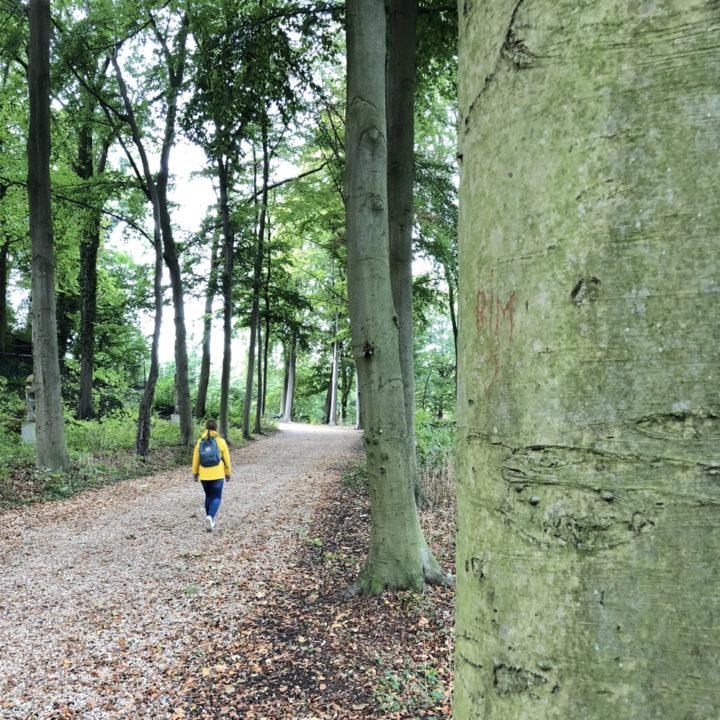 Een meisje met gele regenjas aan het wandelen in een laan met hoge bomen.