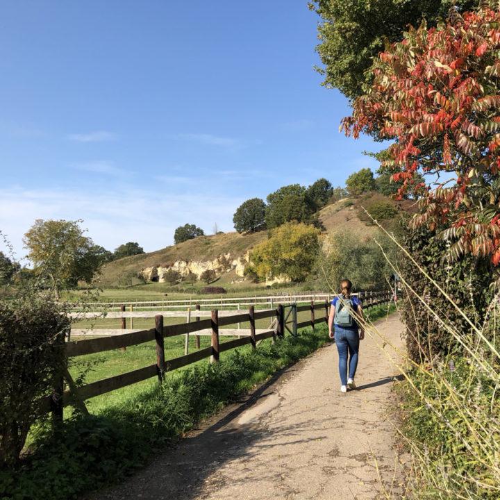 Een wandelaar aan de rand van de mergelwand in de herfst