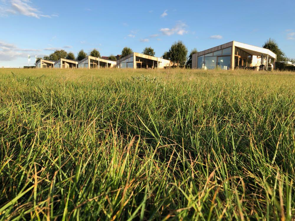 Vijf unieke vakantiehuizen met grote glazen gevels, in het gras.