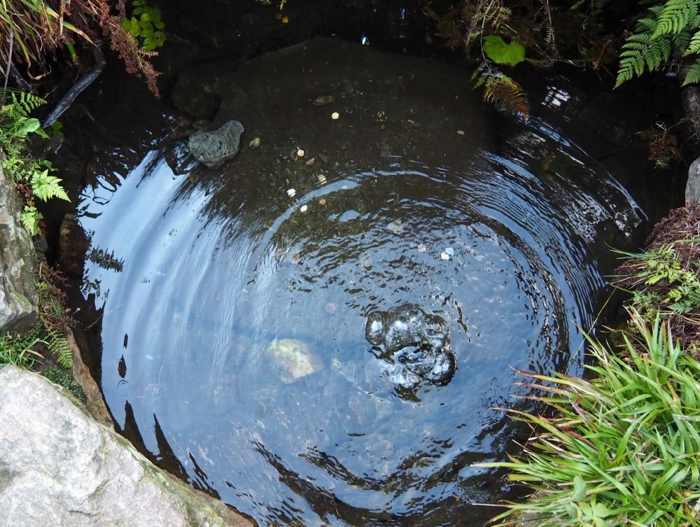 Een watertje tussen mos en stenen waarin lucht omhoog bubbelt
