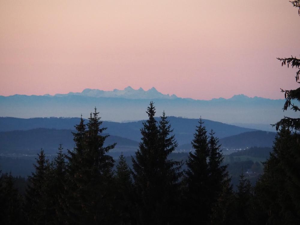 Zonsopgang boven de heuvels met dennenbomen en een pastelkleurige lucht