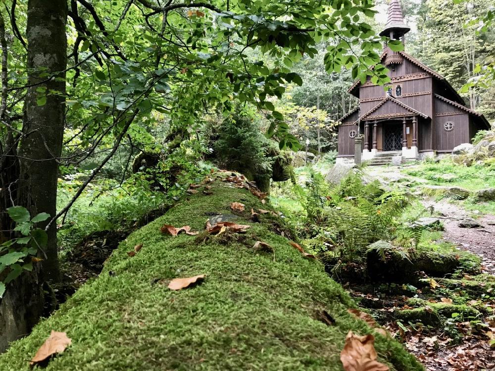 Een houten kapel midden in het bos en tussen het mos