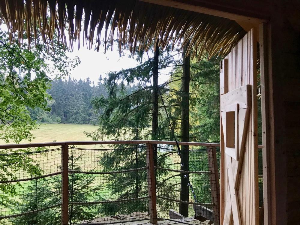 Uitzicht op een open veld in het bos vanuit de boomhut