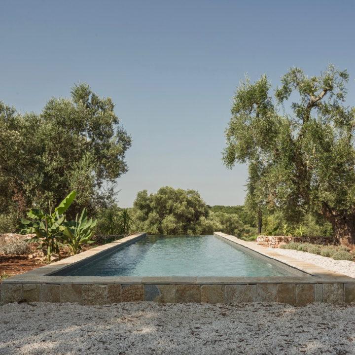 Prachtig en verwarmd zwembad, met uitzicht over de olijfgaard