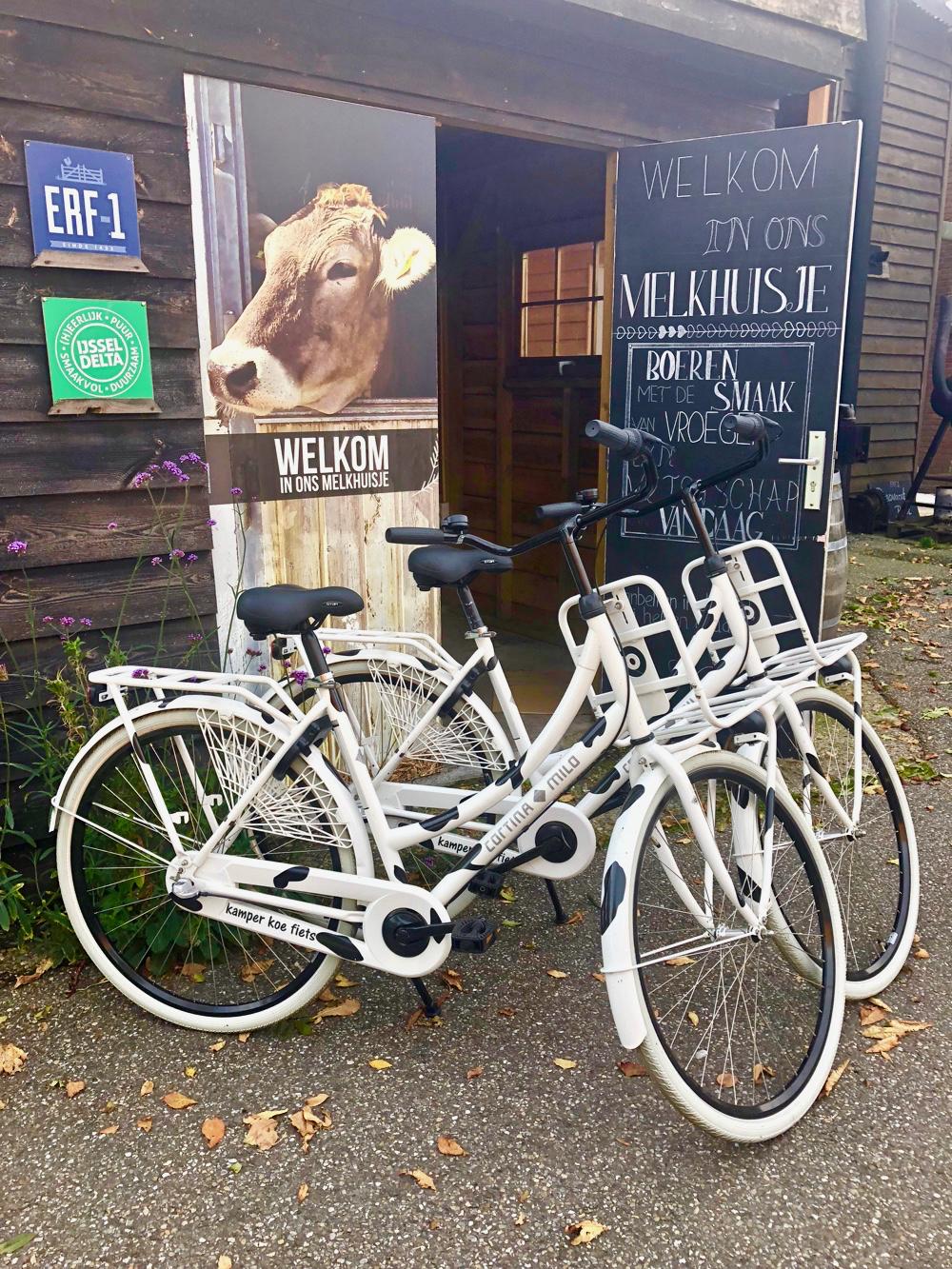Twee wit met zwarte koeienvlekken beschilderde fietsen op het erf van Erf1
