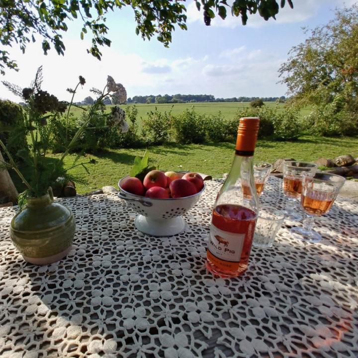 Tuintafel op het terras met glazen rosé en een fles wijn
