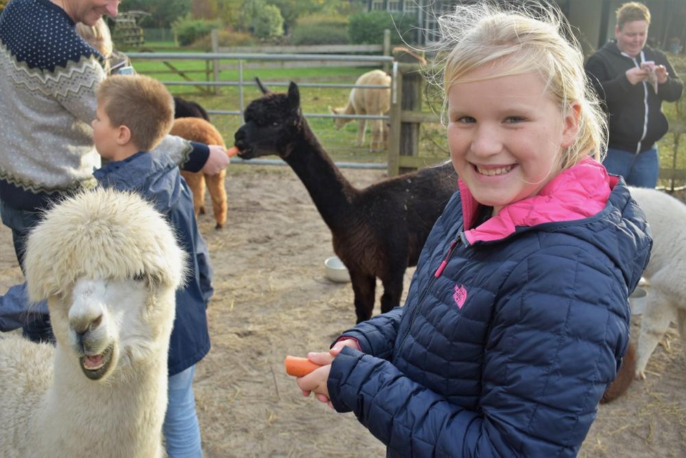 Meisje Meike straalt tussen de Alpaca's