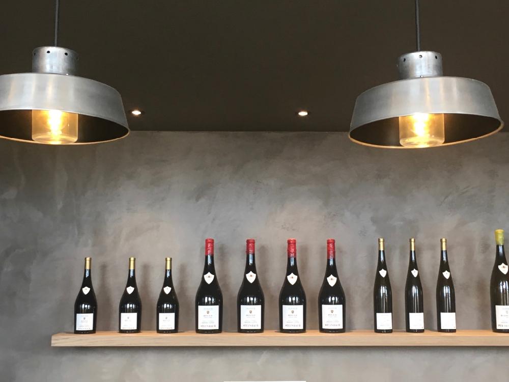 Wijndomeinen bezoeken per segway in de Elzas