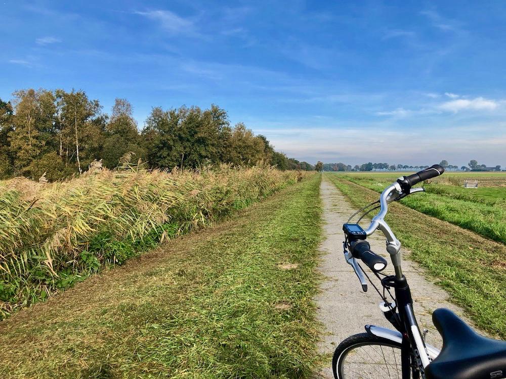 Een fiets op een recht fietspad langs een kraag van riet en een blauwe lucht
