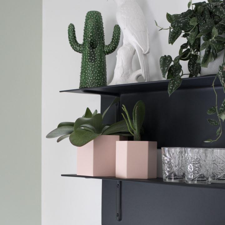Zwart wandrek met glazen, een cactus van steen, planten