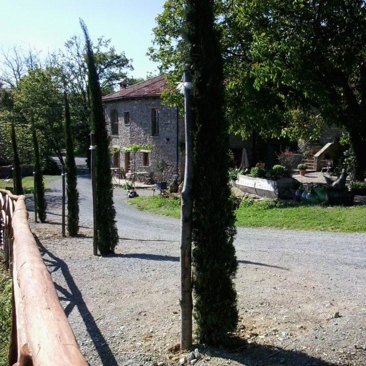 Oprijlaan met cipressen en Italiaans landhuis