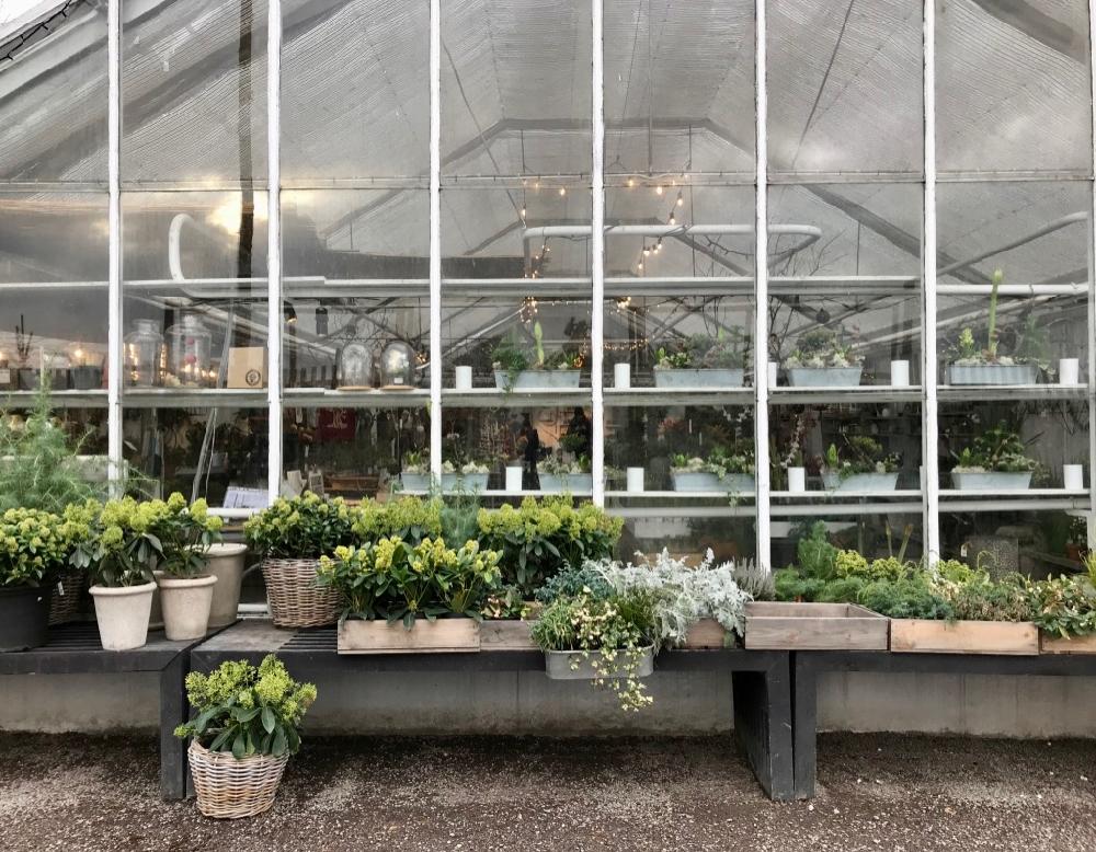Een kas met banken ervoor vol met kistjes en planten bakken vol groen